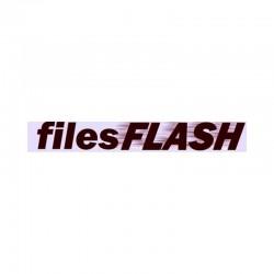 FilesFlash 120 Days Premium Account