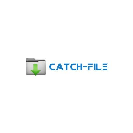Catch-file 7 Days Premium Account