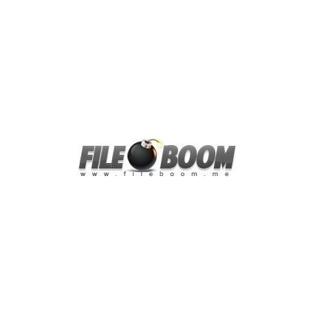 Fileboom.me 365 Days Premium Account